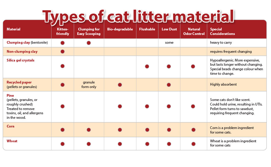 Is Crystal Cat Litter Environmentally Friendly