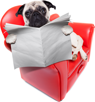gpf_dog_paper